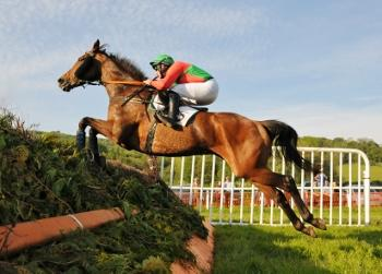 Robert Hawker – Point to Point Trainer